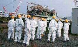 ژاپنیها یک ربات ماری برای جستجوی نیروگاه هستهای فوکوشیما ساختند!