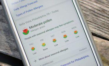 گوگل امکان پیشبینی حساسیت فصلی را به نتیجه جستجوهای خود اضافه میکند