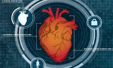 اندازه قلب به عنوان یک ویژگی امنیتی بیومتریک توسط محققان آزمایش شد
