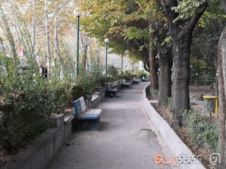 Huawei-Mate-10-Pro-Mojtaba-10-450x338 بررسی میت 10 پرو هواوی: آقای دو زیست!