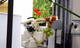 با آخرین محصول پاناسونیک آشنا شوید؛ ربات گوجهچین!