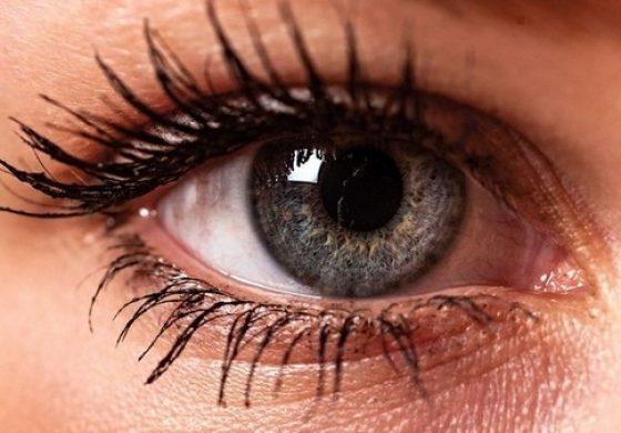 هوش مصنوعی گوگل بیماری قلبی را از طریق اسکن چشم شما پیشبینی میکند