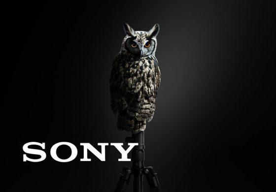سونی در نمایشگاه MWC 2018 از یک ماژول دوربین دوگانه با ISO 51200 رونمایی کرد