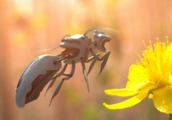 والمارت یک پتنت برای زنبورهای گردهافشان رباتیک ثبت کرد