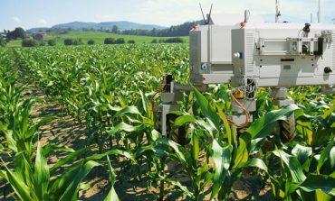 آلفابت ایکس قصد دارد از فناوری هوش مصنوعی در تولید مواد غذایی استفاده کند