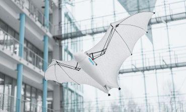 مهندسان با استفاده از علم بیونیک یک ربات خفاشی ساختند