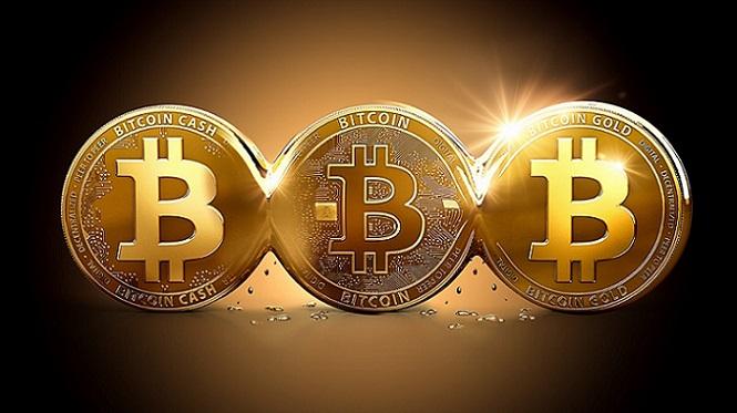 چطور ارز دیجیتال را نگهداری کنیم؟