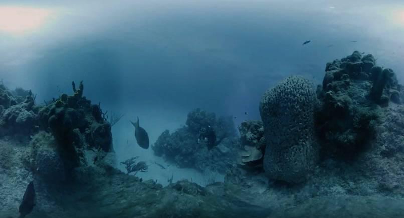 Marine_Imaging_Technologies_4k_VR_Sample_-_YouTube دوربین واقعیت مجازی Hydrus VR امکان فیلمبرداری ۳۶۰ درجه از اعماق دریا را با کیفیت 8K فراهم میکند