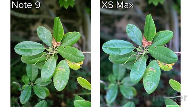C03C73DE-0612-4226-B856-269BD89419DC مقایسه دوربین آیفون XS مکس و گلکسی نوت 9 سامسونگ