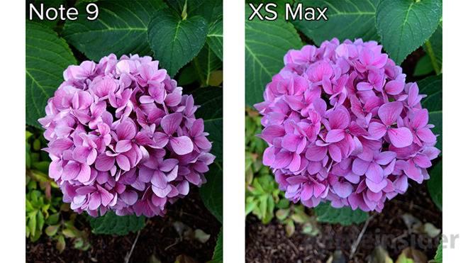 D78ED206-3C2D-48C8-89A6-22F71EB994BE مقایسه دوربین آیفون XS مکس و گلکسی نوت 9 سامسونگ