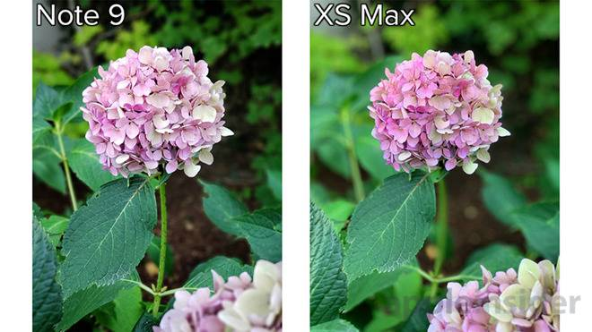 E5BEDF15-4AE1-4B84-807B-E18575FA2D06 مقایسه دوربین آیفون XS مکس و گلکسی نوت 9 سامسونگ